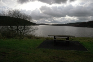 One of many picnic areas