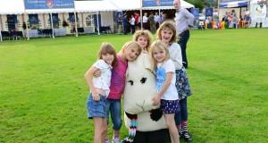Llandovery Sheep Festival